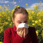 「花粉症」を英語で!花粉症を英語で説明【発音方法も】